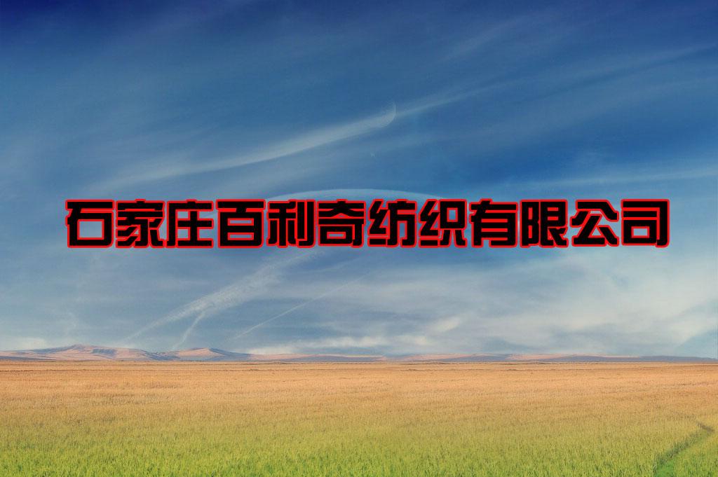 石家庄百利奇纺织材料有限公司建设年产500万米高档