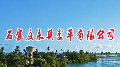 石家庄永其裘革有限公司建设年产800万张裘皮清洁化改造项目的改建项目环境影响评价公众参与公示